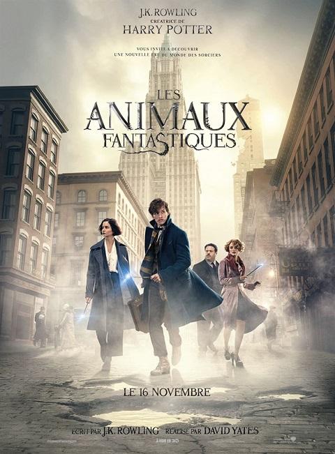 animaux fantastiques_fantastic beasts_eddie redmayne_dan fogler_david yates_harry potter_affiche_poster